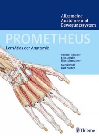 PROMETHEUS - LernAtlas der Anatomie - Allgemeine Anatomie und ...