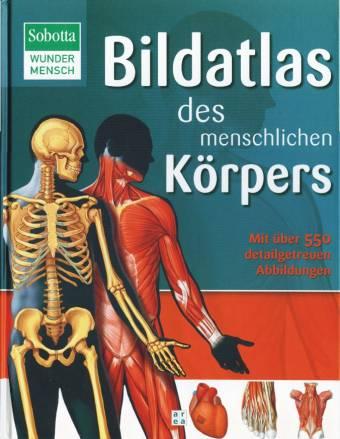 Bildatlas des menschlichen Körpers - Mit über 550 detailgetreuen ...